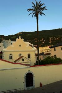Nefutsot Yehuda Synagoge mit der höchste Palme von Gibraltar